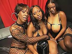 Big brown tits, large round asses and tight black slits are here in this lesbian threesome